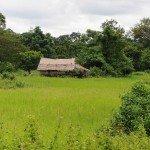 Angkor-4188