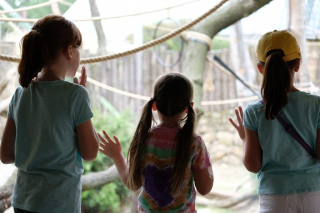 Girls at the Orangutan Exhibit
